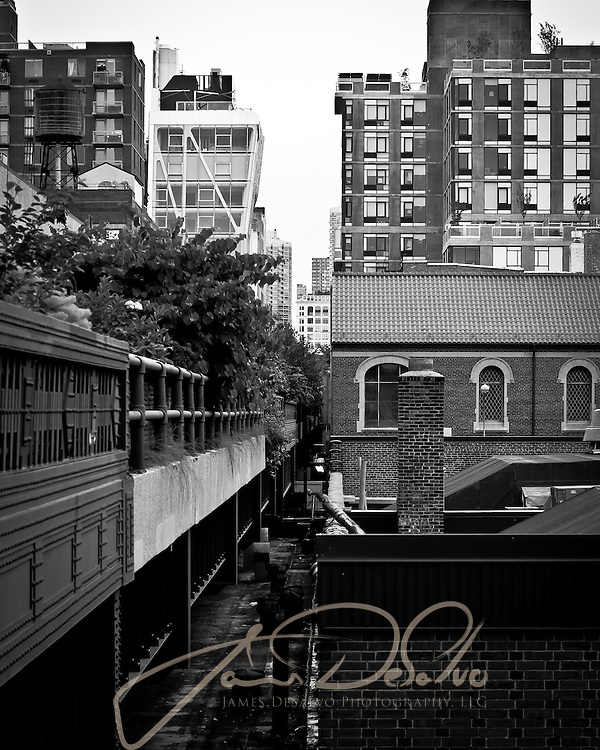 James DeSalvo Project - NYC Lines & Reflections NYC
