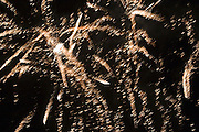 Closeup of fireworks on New Years Eve