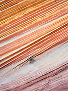 """Scene from the beautiful geological formation of colorful folded sandstone known as """"The Wave."""" North Coyote Buttes, Vermillion Cliffs National Monument, Arizona."""