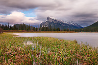 Mount Rundle as seen from the lakeshore at Vermillion Lakes in Banff<br /> <br /> ©2014, Sean Phillips<br /> http://www.RiverwoodPhotography.com