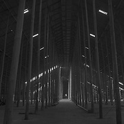 Cathedral of Poles<br /> <br /> Murtoa Stick Shed