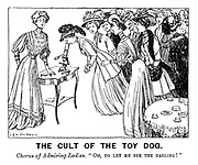 """The Cult of the Toy Dog. Chorus of admiring ladies. """"Oh, do let me see the darling!"""""""
