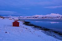 Red seaside barns in snowy winter landscape, Offersøy, Lofoten Islands, Norway