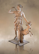 """Artemis and a deer, known as """"Diana of Versailles"""", a 1st - 2nd century Roman statue in marble probably from Italy.  Artemis, Diana to the Romans, is goddess of the hunt, is accompanied by a deer.  The Diana of Versailles, similar to other Roman replicas was found in Libya or Turkey and was copied from a lost Greek bronze original attributed to Leochares, c. 325 BC .  First the statue was at Fontainbleau then the Louvre ancient hall and finally it went to Versailles. From the collection of Louis XIV, Pope Paul IV and Henry II (1556) . Inv MR 152 ( or Ma 589), Louvre Museum Paris .<br /> <br /> If you prefer to buy from our ALAMY STOCK LIBRARY page at https://www.alamy.com/portfolio/paul-williams-funkystock/greco-roman-sculptures.html- Type -    Louvre    - into LOWER SEARCH WITHIN GALLERY box - Refine search by adding a subject, place, background colour,etc.<br /> <br /> Visit our CLASSICAL WORLD HISTORIC SITES PHOTO COLLECTIONS for more photos to download or buy as wall art prints https://funkystock.photoshelter.com/gallery-collection/The-Romans-Art-Artefacts-Antiquities-Historic-Sites-Pictures-Images/C0000r2uLJJo9_s0c"""