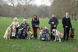 © Licensed to London News Pictures. 21/02/2013. London, UK. Five of the finalists for the Kennel Club's 'Friends for Life' competition are seen in Green Park, London today (21/02/2013). The 'Friends for Life' competition, which has been running since 2006, celebrates heart-warming stories of friendship in adversity, the dog that the public votes as the winner will be presented with a trophy in the main arena during Crufts at the Birmingham NEC on the 10th March. Photo credit: Matt Cetti-Roberts/LNP