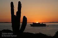 09: SEA CORTEZ SAN ESTEBAN SUNRISE