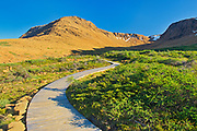 Boardwalk on trail at the Tablelands at sunset. Earth's mantle exposed.<br />