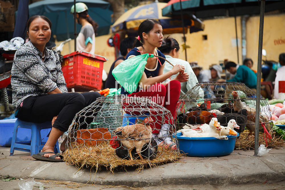 15/04/2013 - Hanoi, Vietnam. Female street vendors selling live ducks and chickens in a street market in the Thành Công District of Hanoi. Photo by Rob Arnold