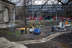 London, UK. 6th February, 2021. Trees in Euston Square Gardens felled by National Eviction Team bailiffs working on behalf of HS2 Ltd. The bailiffs have been working to remove environmental activists from campaign group HS2 Rebellion seeking to protect the trees from tunnels dug by them beneath Euston Square Gardens for the past eleven days in order to clear the site for the HS2 high-speed rail link.