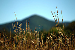 08 October 2016:   Great Smokey Mountains National Park The peaks of the smoky mountains provide a backdrop for the golden colored grass of fall in Cades Cove in the Smoky Mountain National Park in Blount County Tennessee