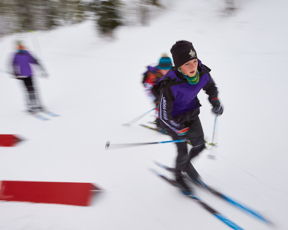 Whitehorse Cross Country Ski Club's January race at Mt MacIntyre was held on Saturday January 23, 2021.