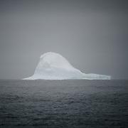 Antarctica Kickstarter 2