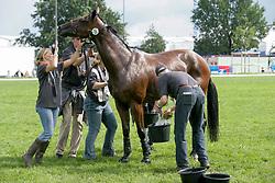 Donckers Karin - Gazelle de la Brasserie<br /> World Equestrian Games Aachen 2006<br /> Photo © Hippo Foto
