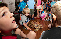 Reptiles on the Move at Gilford Library.