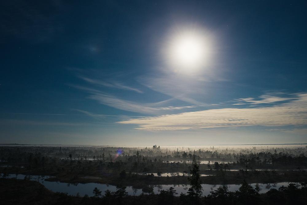 Fool moon illuminates a landscape of raised bog with a lot of bog pools and layer of rising fog, Kemeri National Park (Ķemeru Nacionālais parks), Latvia Ⓒ Davis Ulands | davisulands.com