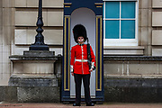 A soldier is seen standing guard inside Buckingham Palace in London, Britain, on Sunday, May 3, 2020. Britons are now in their sixth week of lockdown due to the Coronavirus pandemic. Countries around the world are taking increased measures to stem the widespread of the SARS-CoV-2 coronavirus which causes the Covid-19 disease. (Photo/ Vudi Xhymshiti)