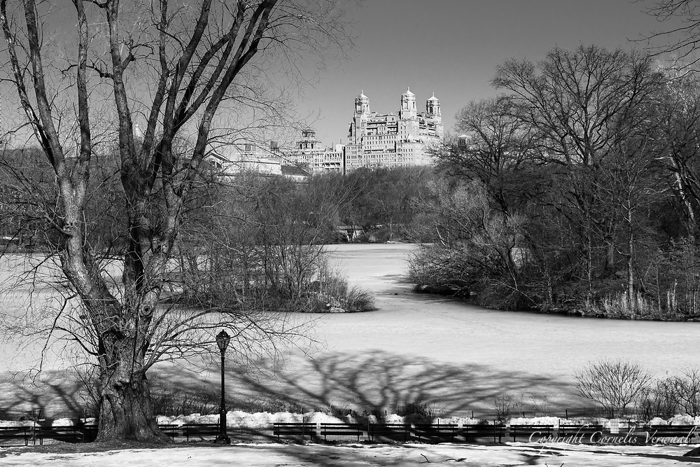 The Lake in Central Park, Feb. 26, 2021.