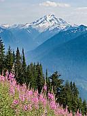 Mountain Loop Hwy: peaks