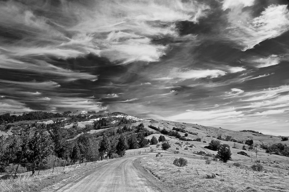 driving along a country road high atop a ridge line in far northern california near Fortuna