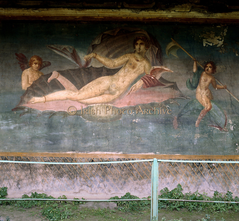 Venus resting in the shell. House of Venus, Pompei, Italy. Fresco.