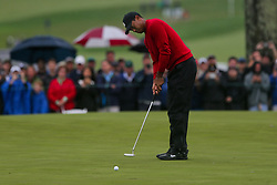September 10, 2018 - Newtown Square, Pennsylvania, United States - Tiger Woods putts the 16th green during the final round of the 2018 BMW Championship. (Credit Image: © Debby Wong/ZUMA Wire)