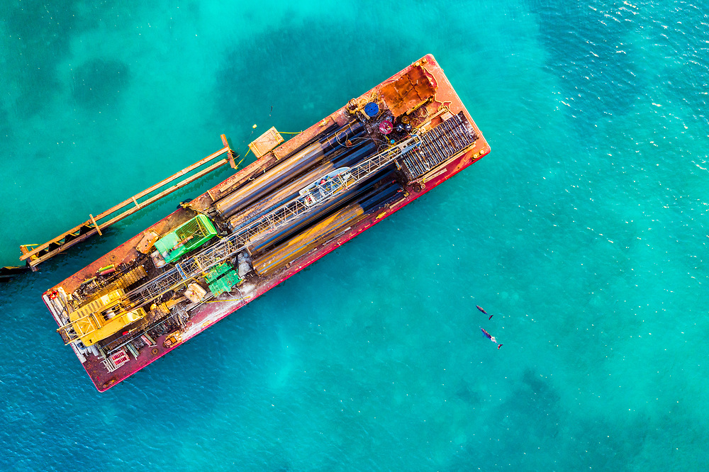 A barge constructs a large dock and breakwater for superyachts in a seagrass area as bottlenose dolphins (Tursiops truncatus) approach. Harbour Island, Bahamas.