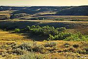 Killdeer Badlands in  East Block<br /> Grasslands National Park<br /> Saskatchewan<br /> Canada