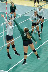 26 August 2017:  Anna Clausen & Tyler Brown during the green-white scrimmage of the Illinois Wesleyan Titans in Shirk Center, Bloomington IL