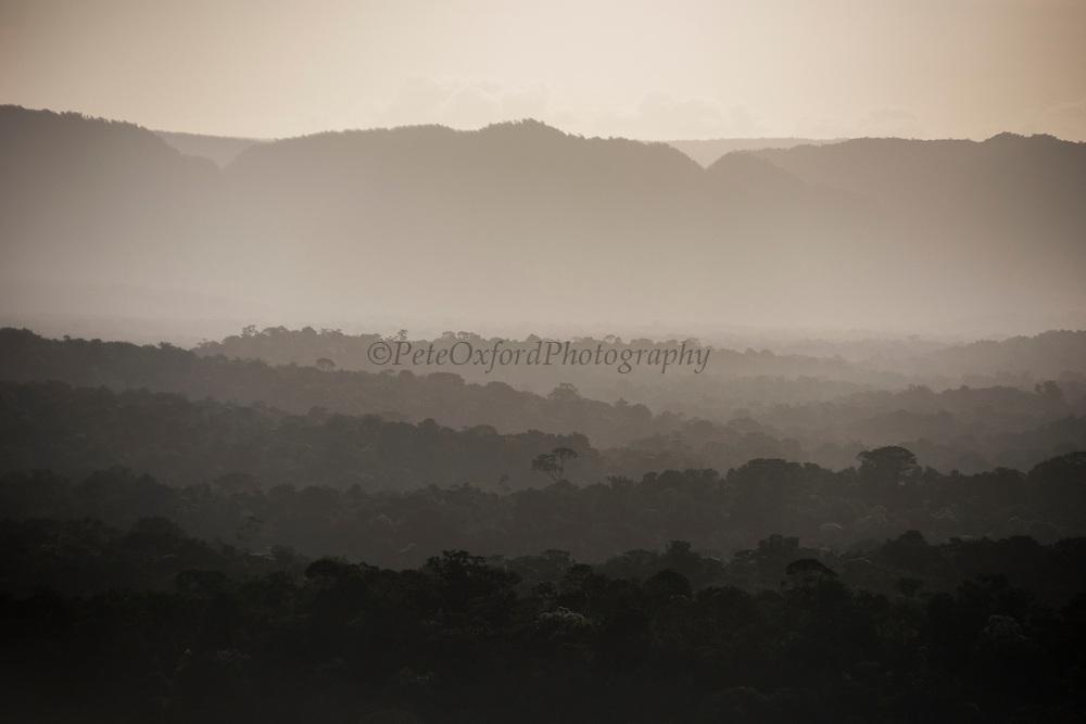 Pakaraima Mountains & rainforest<br /> GUYANA<br /> South America