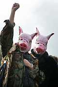 Peoples Assembly March for Health, Homes, Jobs and Education. End Austerity Now! march 16th April 2016 in London, United Kingdom. Two protestors dressed as pigs. 50.000 thousand plus turned out to protest against the Conservative Government and their austerity policies and against tax evasions revealed in the Panama Papers.