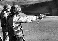 Irish Army Ranger Wing