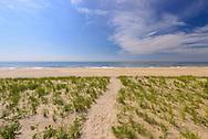 Path to Beach, Meadow Lane, Southampton, Long Island, New York