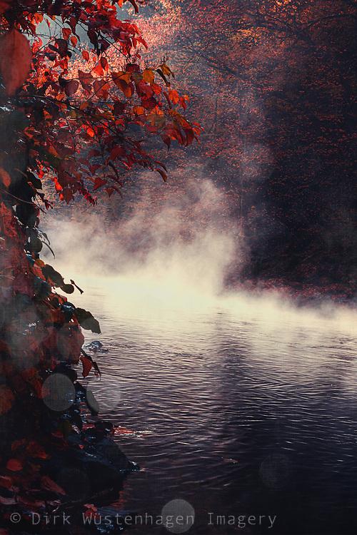 Rising fog over river Wupper on a November morning