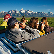 A Teton Science Schools wildlife tour looks for a dening family of coyotes in Grand Teton National Park, Wyoming. (Greg Peck, Matthew Bart, Sean Baker, Maura Bushior, Katie-Cloe Stock, Tracy Logan, Paul Maddex)