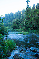 Alsea River, Oregon.
