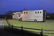 2012-03-roshoeve-hengstenshow