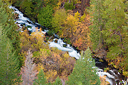 Outlet Creek flows through an autumn forest in the Klickitat Canyon, Klickitat County, Washington, USA