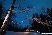 Illuminated tree and headlamp trail at night outside the backcountry North Pole Hut, San Juan Mountains, Colorado.