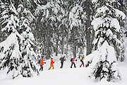 A group of colorfully dressed snowshoers hike through Commonwealth Basin, near Snoqualmie Pass, Washington on January 26, 2008.