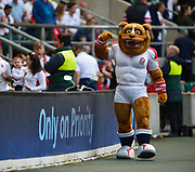 The English Bulldog mascot waves to the crowd during the The Old Mutual Wealth Cup match England -V- Wales at Twickenham Stadium, London, Greater London, England on Sunday, May 29, 2016. (Steve Flynn/Image of Sport)