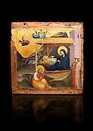"""Gothic painted panel of the Nativity scene by Taddeo Gabbi of Florence, circa 1325, tempera and gold leaf on wood. National Museum of Catalan Art, Barcelona, Spain, inv no: MNAC 212807. Against a black background. <br /> Taddeo Gabbi, one of Giotto's most brilliant disciples, painted this Nativity when he was still part of Giotto's workshop. The painting has many of Giotto's hallmarks such as  spatial illusionism or the reality of figures that can be seen in the nativity of the Peruzzi Chapel.<br /> <br /> SPANISH<br /> <br /> Taddeo Gabbi, uno de los discipulos mas brillantes de Giotto, debio pintar esta Natividad cuando aun formaba parte del taller del maestro. En ella se ven las conquistas de la """"revolucion giottesca"""", como el illusioismo espacial o el realismo de las figuras. Maria arropa a Jesus dentro del establo, mientras los sobrevuela un grupo de angeles. La posicion de uno de ellos y la presencia de una oveja indican que la composicion se completaba a la izquierda con el Anuncio a los pastores. En primer termino aparecen un pensativo Jose y las dos parteras que susurran, un recurso ya utilizado pr Giotto en los frescos de la Capilla Peruzzi.."""