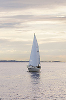 Sailboat in Semiahmoo Bay, Washington.