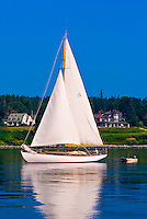 Sailboat, Castine harbor, Penobscot Bay, Maine USA