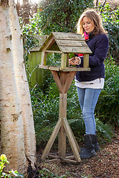 Feeding the birds - putting seed out onto a bird table