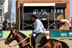 Freio de Ouro: Freio Jovem na 38ª Expointer, que ocorrerá entre 29 de agosto e 06 de setembro de 2015 no Parque de Exposições Assis Brasil, em Esteio. FOTO: Pedro Tesch/ Agência Preview