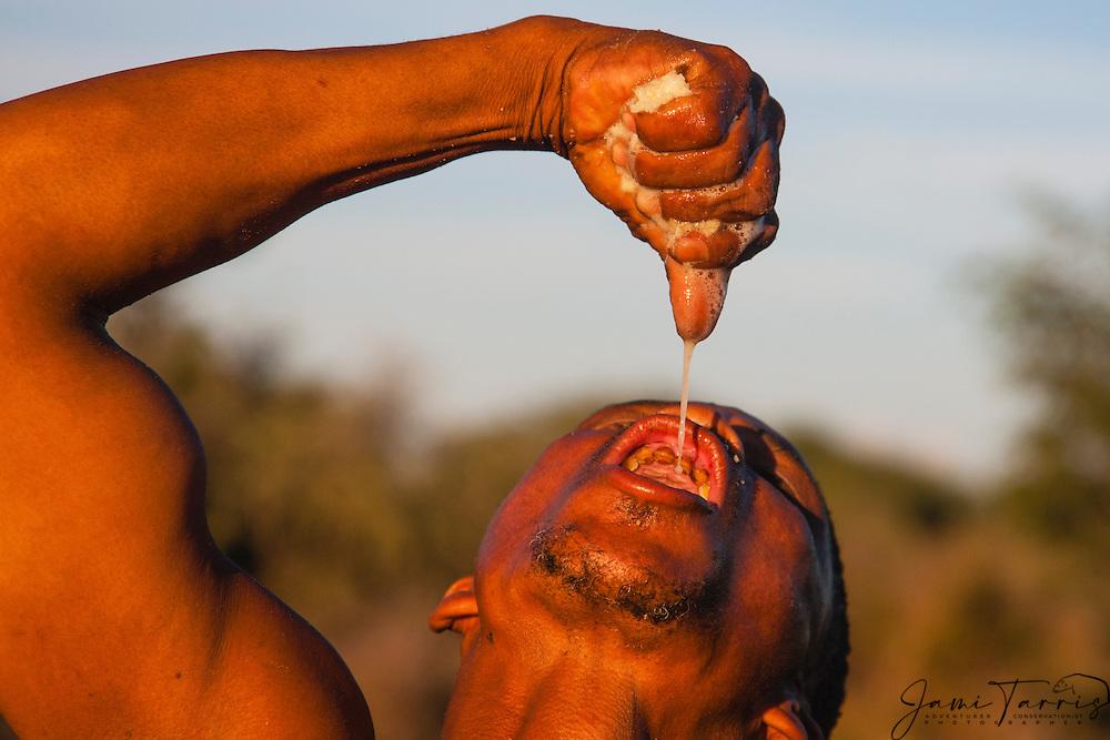 A San bushmen of the Kalahari drinking the milky liquid from a potato-like bi bulb tuber, Kalahari, Botswana, Africa