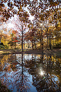 Holden Arboretum in the Fall