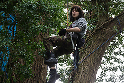 An HS2 Rebellion tree protector climbs a mature tree at Denham Protection Camp on 7 September 2020 in Denham, United Kingdom. Anti-HS2 activists continue to try to prevent or hinder works on the controversial £106bn high-speed rail link for which the start of the construction phase was announced on 4th September from a series of protection camps based along the route of the line between London and Birmingham.