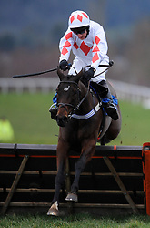 Dainty Diva ridden by Matt Griffiths during the Evergreen Landscaping And Tree Surgery Handicap Hurdle (Class 5) (4YO plus)  - Photo mandatory by-line: Harry Trump/JMP - Mobile: 07966 386802 - 09/03/15 - SPORT - Equestrian - Horse Racing - Taunton Racing - Taunton Racecourse, Somerset, England.