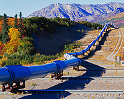 Trans Alaska Pipeline constructed with extra-long support beams and sliding shoes where the pipeline crosses the Denali Fault, Alaska Range, Alaska.